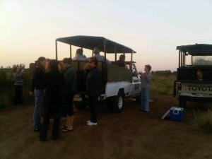 Ladies Night Drive Safari