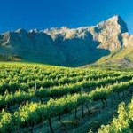 Cape Town 5 Day Package 4