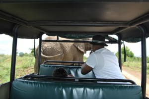 Durban Safaris with Heritage Tours & Safaris