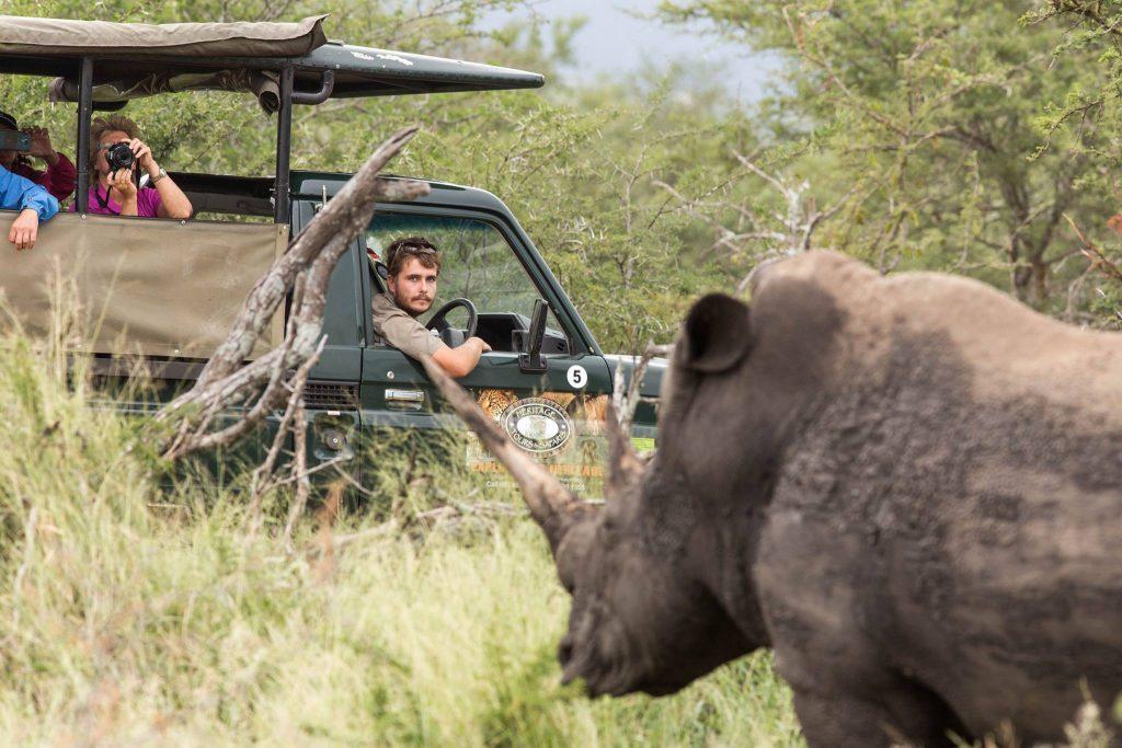 day safaris hluhluwe-imfolozi park