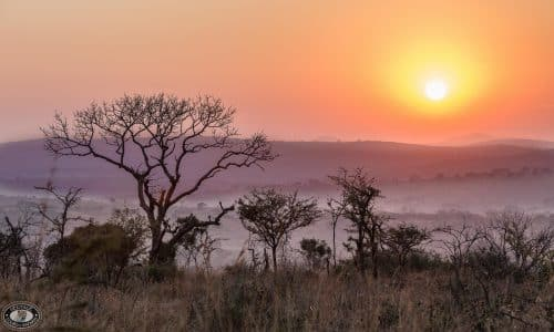 safari tour packages south africa