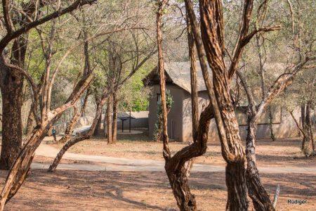 nselweni-bush-camp (3)